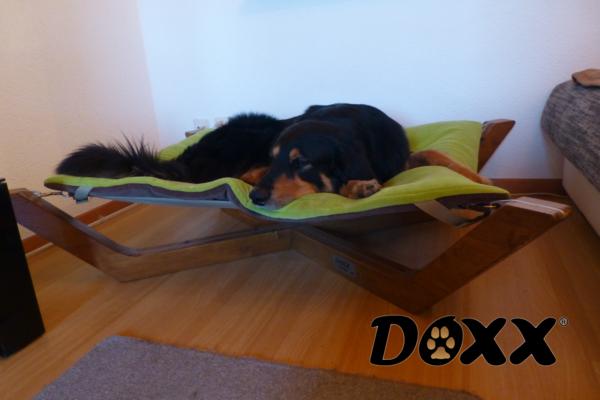 Doxx Lounge